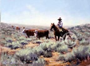 Lorna Dillon's Great Basin cowboy